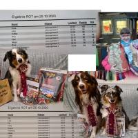 Rally Obi Turnier HSG Rhein-Sieg - Genie und Wahnsinn ganz eng beisammen