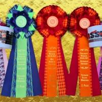Versatility Wochenende Herne - Show+++CASD und ASSD Vereinsmeisterschaften im Rally OBi+++Show
